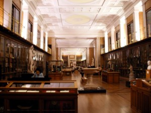 The Enlightenment Gallery, British Museum