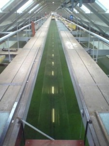 The 300 metre long Denny tank at Dumbarton