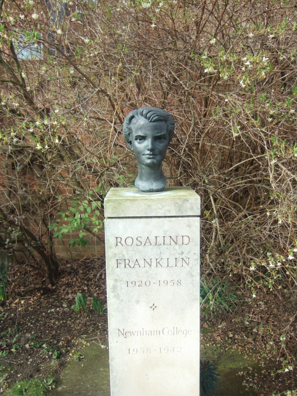 Howard Bates, Rosalind Franklin sculpture.